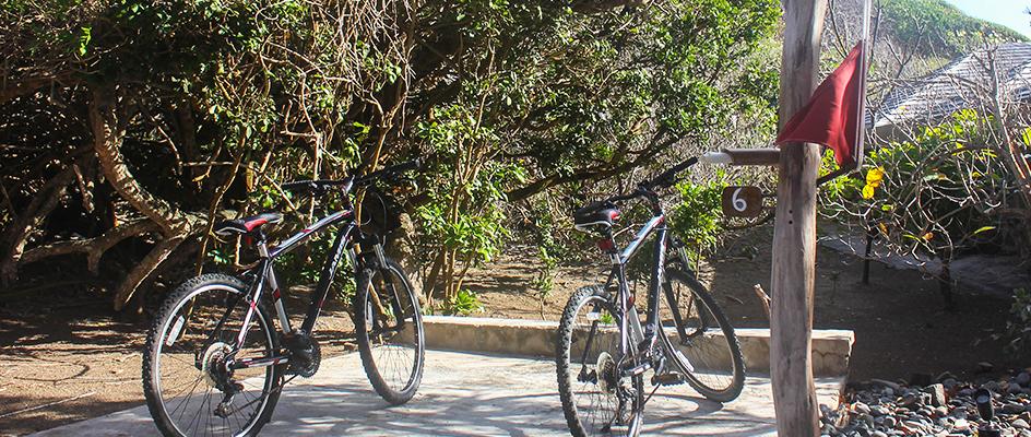 Flagand Bikes (1)