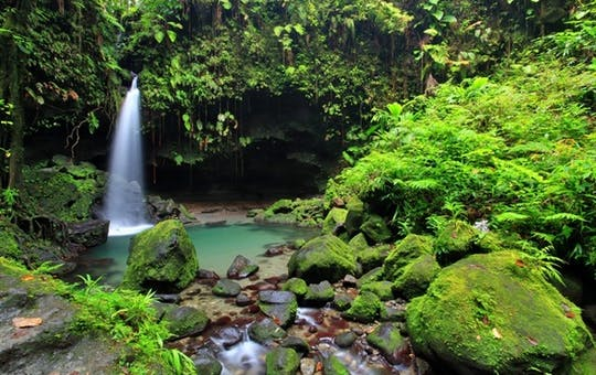 Lush Natural Settings, Dominica