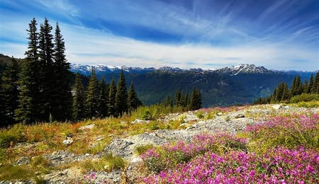 Blackcomb Mountains