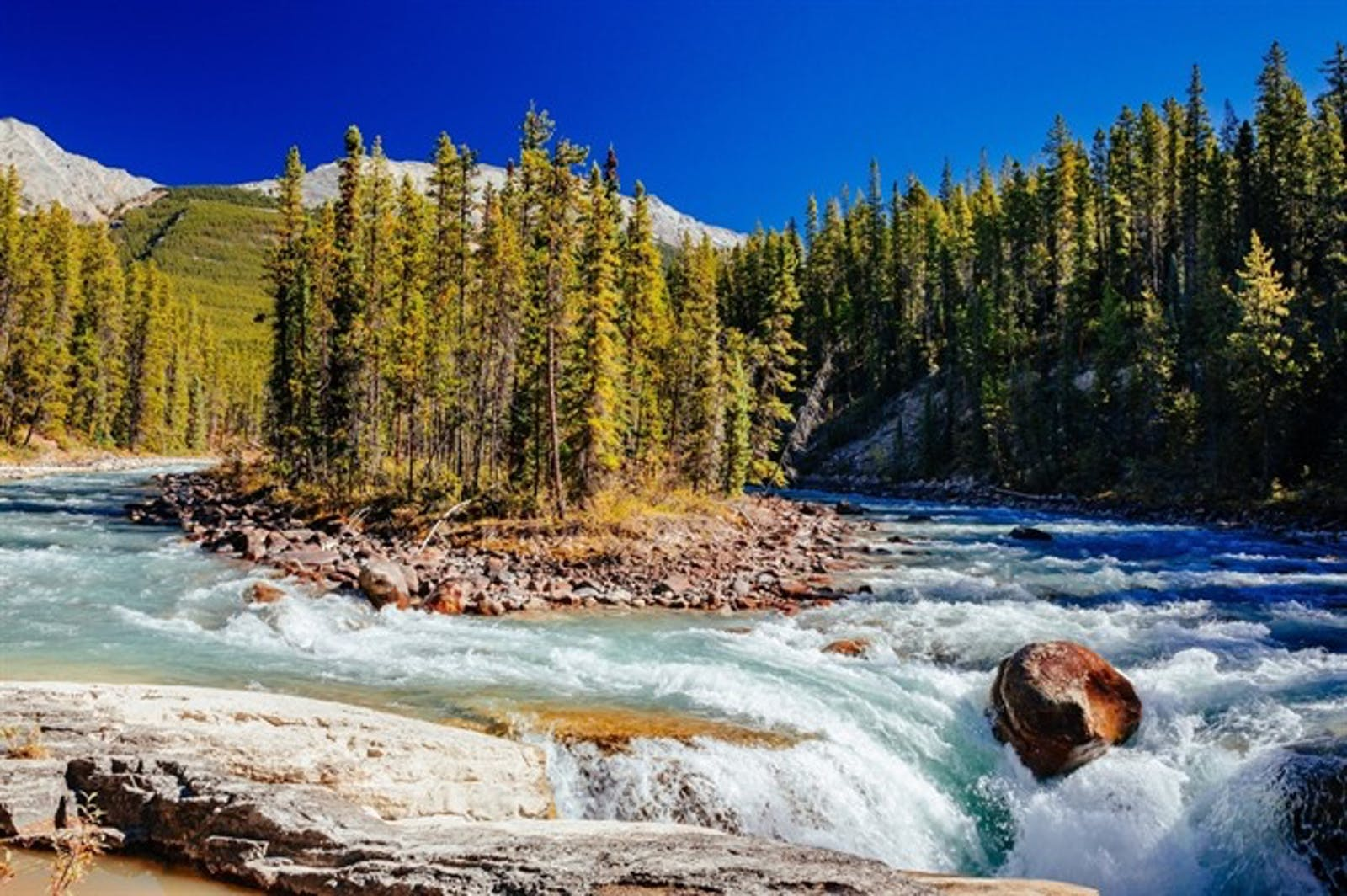 Sunwapta River, Jasper National Park