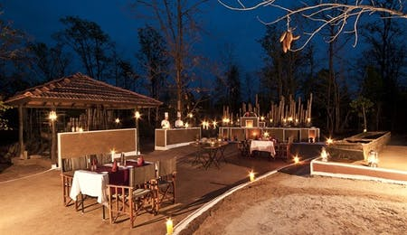 Satpura National Park Holidays