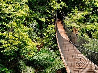 Kota Kinabalu – Kinabalu Park