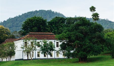 Luxury Kandy holidays