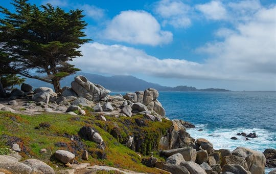 17 Mile Drive At Pebble Beach
