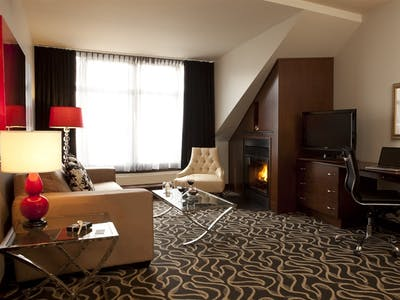 Executive Suite With Terrace Or Fireplace