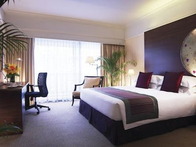 Executive Deluxe Rooms and Suites