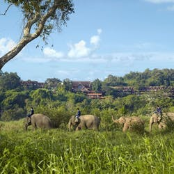 Thailand: city, elephants and beach