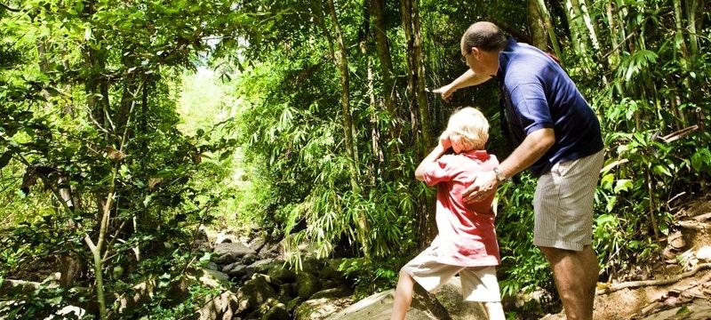 Banyan Tree Rangers