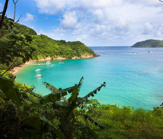 Tobago Island: Luxury Holidays To Caribbean