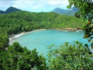 Overview of Calibishie Cove, Dominica