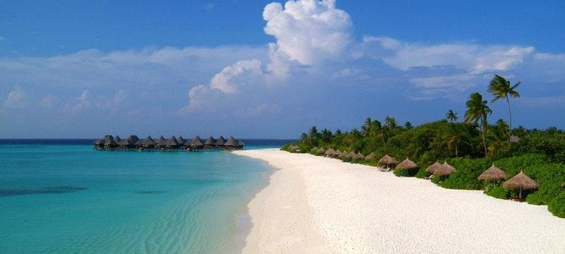 Taste of Sri Lanka plus Maldives