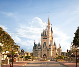 Florida's Theme Parks and New York Family Adventure