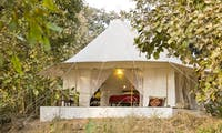 Jamtara Wilderness Camp