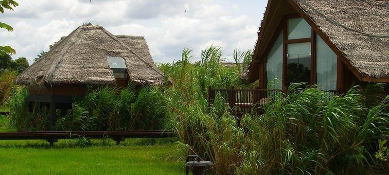 Paddy Field Dwellings