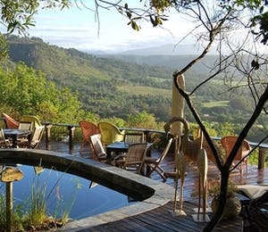Phantom Forest Eco Reserve (Knysna)