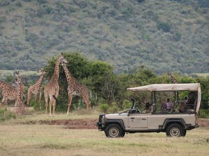 Game drive at Saruni Mara Lodge