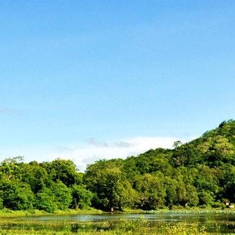 Sri Lanka Holidays