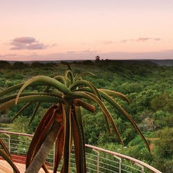 Luxury Eastern Cape Holidays