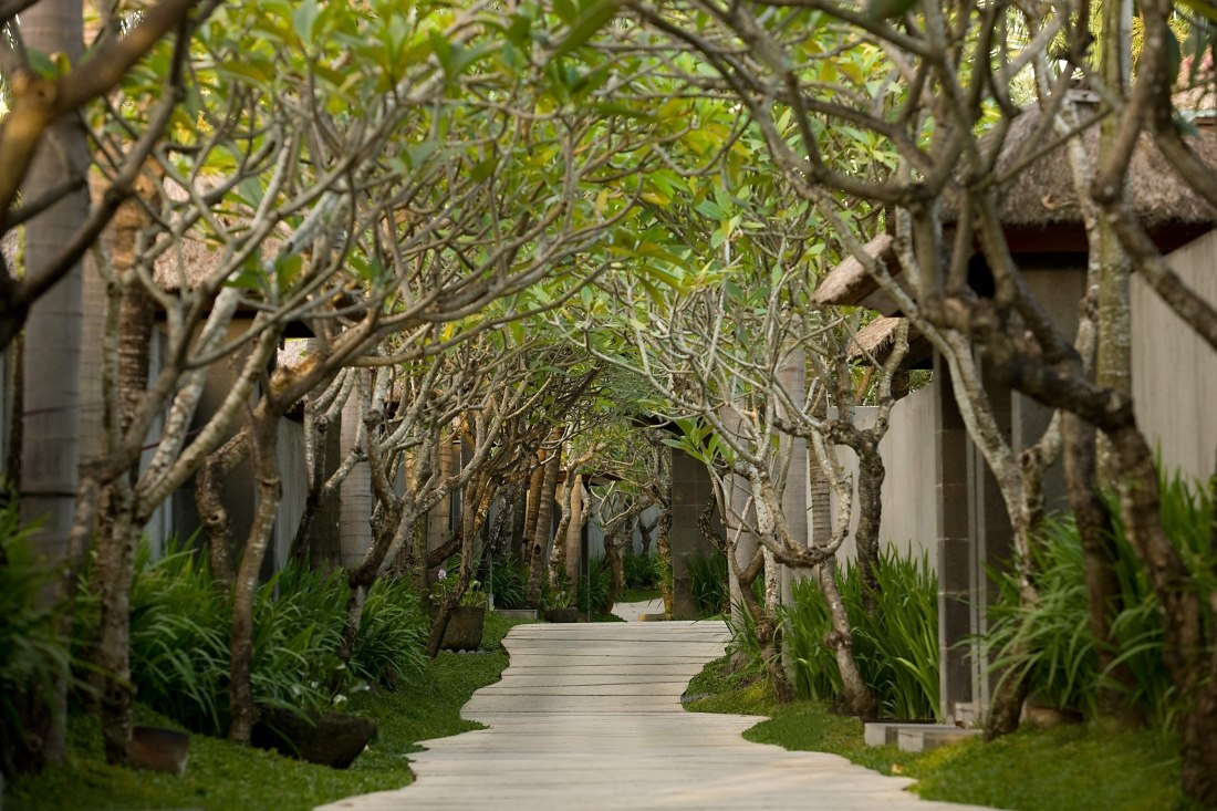 Tree Lined Pathway at The Kayana, Bali