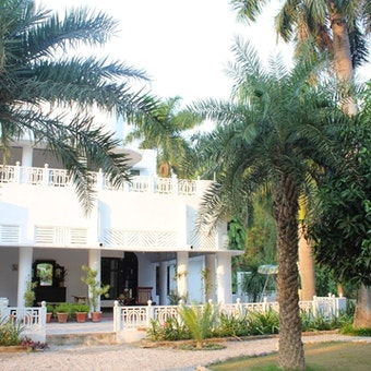 Tree of Life Jaagir Lodge
