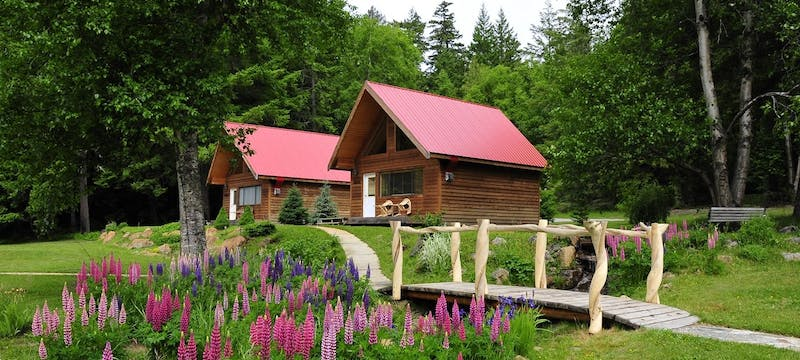 Tweedsmuir Park Lodge Chalets - Photo by Mike Wigle