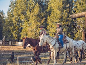 Wranglers At Western Pleasure Guest Ranch