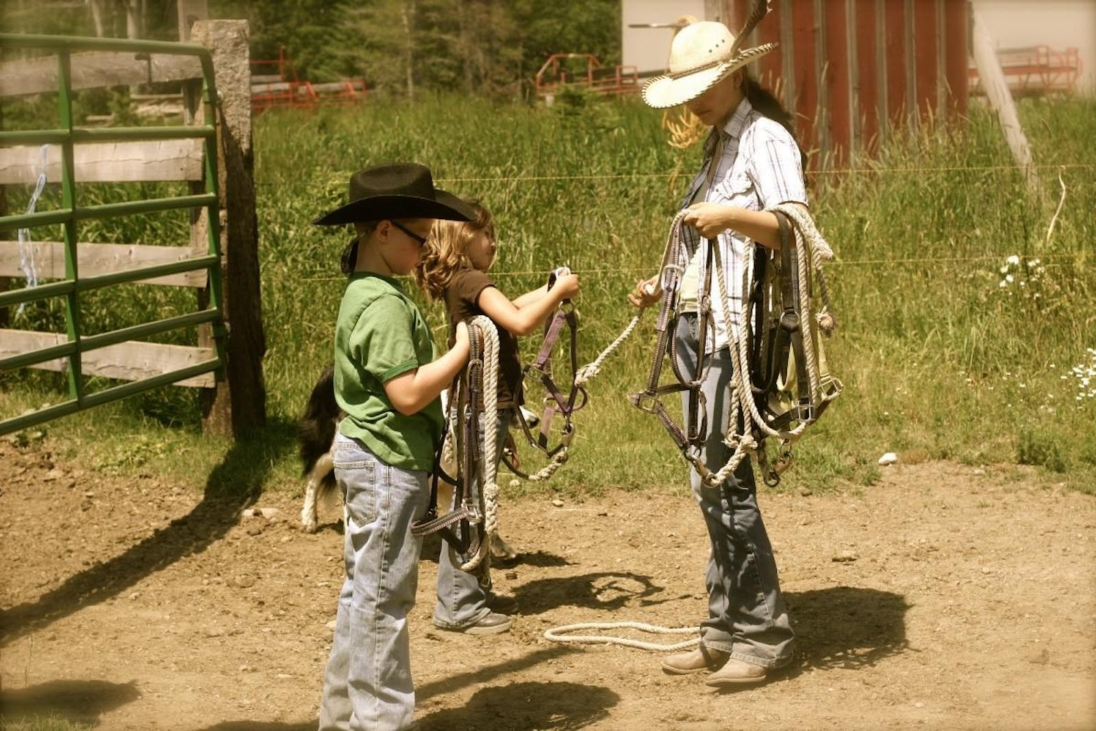 Kids Getting Involved On The Ranch At Western Pleasure Guest Ranch