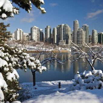 Winter Scenes In Vancouver