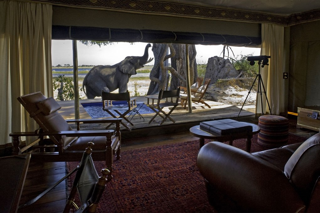 Guest Tent Lounge with Elephant atZarafa Camp